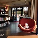 Der Stoffeisbär Poldi macht es sich auf dem gemütlichen Lesesessel in der Buchhandlung cohen+dobernigg gemütlich