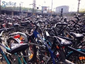 Angekettete Fahrräder am Mainzer Hautbahnhof, nur Lenker, so weit das Auge reicht