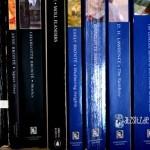 Zweispaltiges Buchregalbrett voller britischer Literatur.